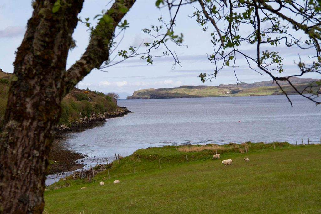 Knott Cottage self catering, Isle of Skye, loch view