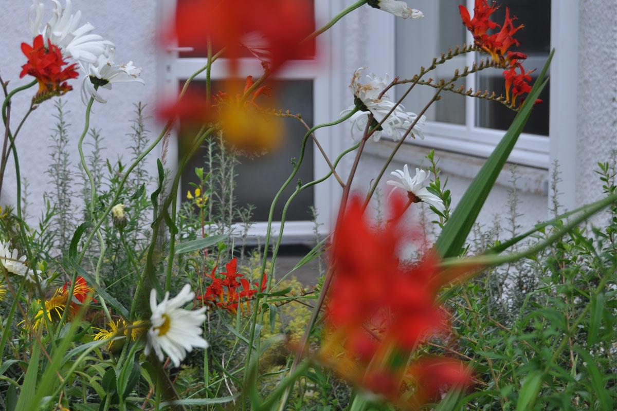 Knott Cottage self catering, Isle of Skye, garden