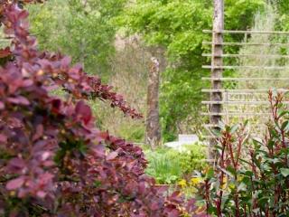 Knott Cottage self catering, Isle of Skye, garden, red bush
